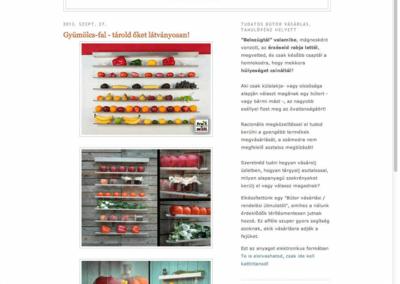 asztalos-szekesfehervar-blogspot-com-FRUITWALL